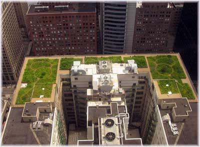 зеленая крыша высотного здания