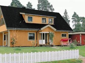 Черная крыша встречается довольно редко