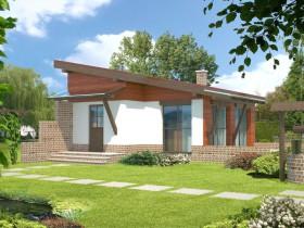 Односкатная крыша для каркасного дома