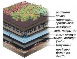 Кровельный пирог эксплуатируемой крыши