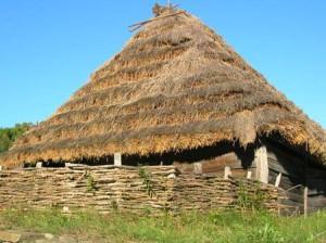 Преимущества крыши из тростника
