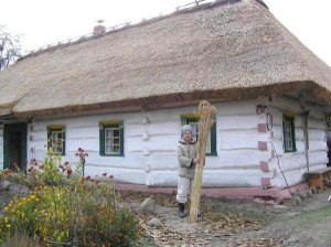 Требования к крышам из тростника