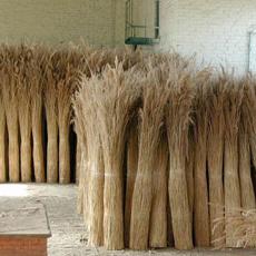 Вязки из тростника